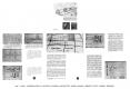 diapositive023