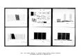 Diapositive038