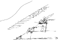 40-cerbere-dessin-deduardo-souto-moura