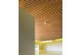 023-BEAUDOUIN-HUSSON-ARCHITECTES-SALLE-DES-FETES-MAXEVILLE