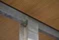 064-BEAUDOUIN-HUSSON-ARCHITECTES-BUREAUX-SOLOREM-NANCY