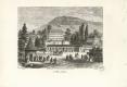 01-1862-johanny-berthier-vittel